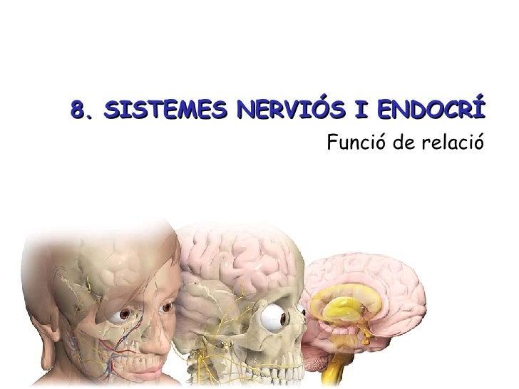 8. SISTEMES NERVIÓS I ENDOCRÍ <ul><li>Funció de relació </li></ul>