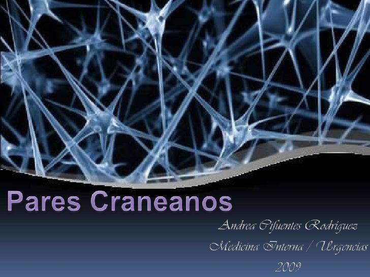 Pares Craneanos <br />Andrea Cifuentes Rodríguez<br />Medicina Interna / Urgencias<br />2009<br />
