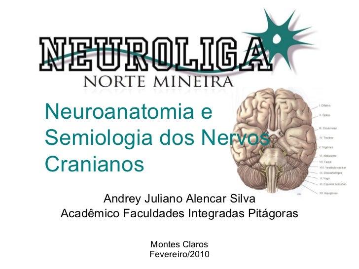 Neuroanatomia e Semiologia dos Nervos Cranianos Andrey Juliano Alencar Silva Acadêmico Faculdades Integradas Pitágoras Mon...