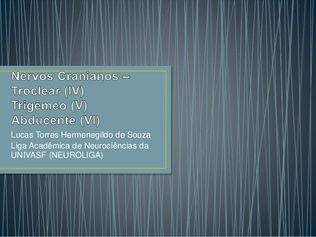 Lucas Torres Hermenegildo de Souza Liga Acadêmica de Neurociências da UNIVASF (NEUROLIGA)