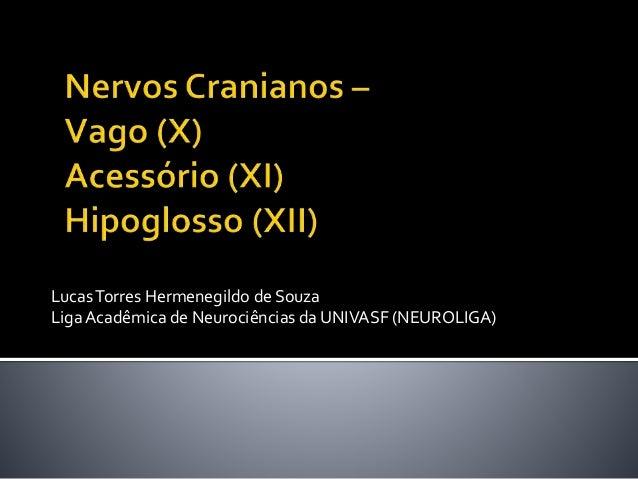 LucasTorres Hermenegildo de Souza LigaAcadêmica de Neurociências da UNIVASF (NEUROLIGA)