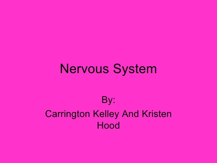 Nervous System By: Carrington Kelley And Kristen Hood