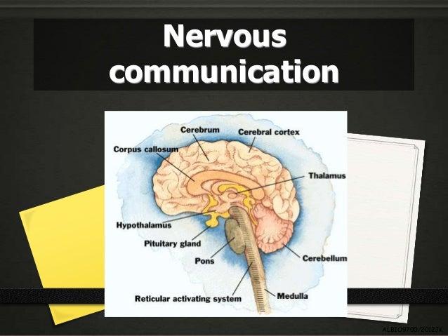Nervouscommunication                ALBIO9700/2012JK