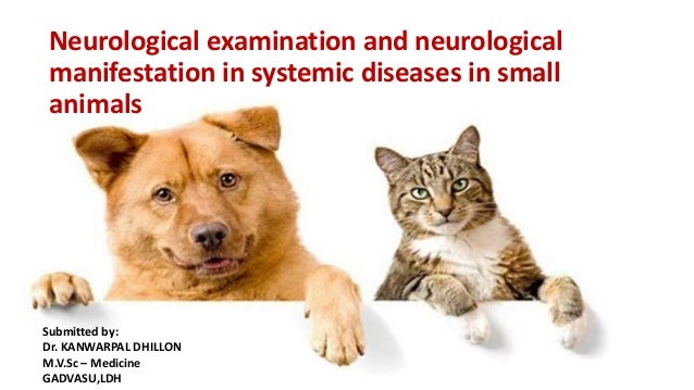 Neurological examination and neurological manifestation in systemic diseases in small animals Submitted by: Dr. KANWARPAL ...