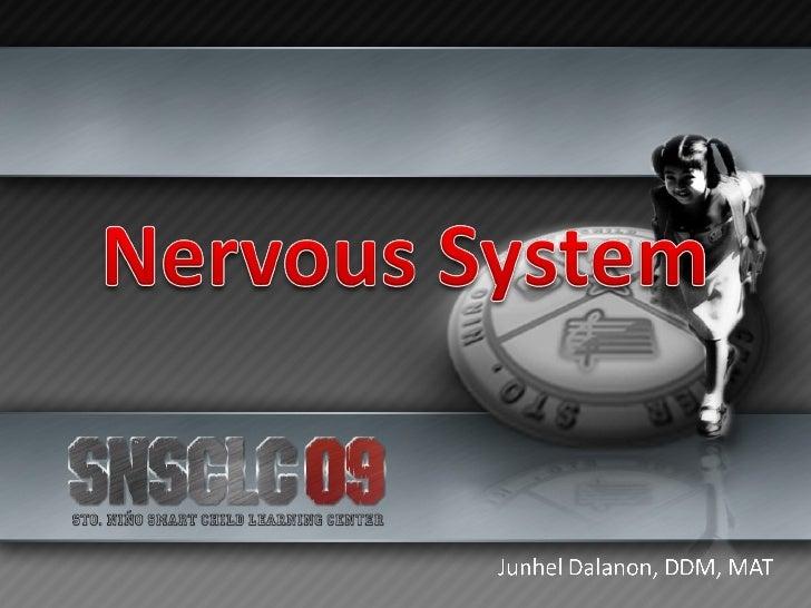 Nervous System Slide 1