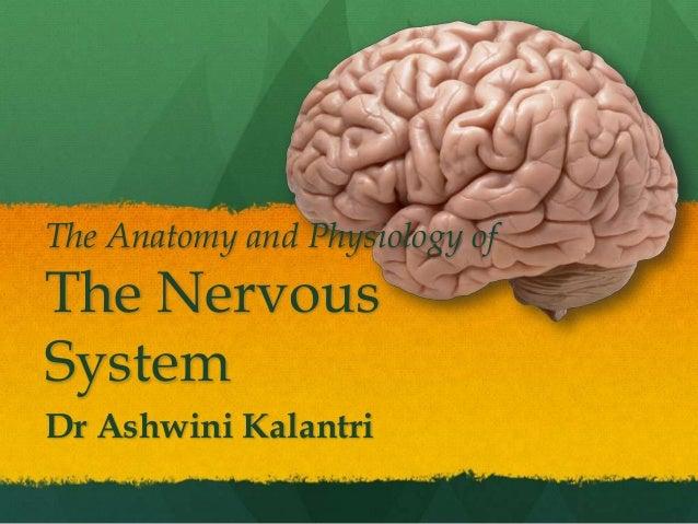 The Anatomy and Physiology ofThe NervousSystemDr Ashwini Kalantri