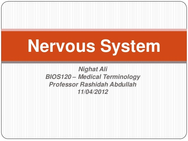 Nervous System           Nighat Ali BIOS120 – Medical Terminology  Professor Rashidah Abdullah           11/04/2012