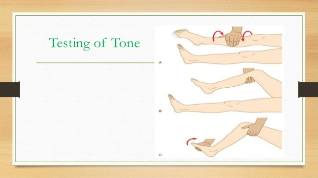 how to ask patient to evert foot while examining