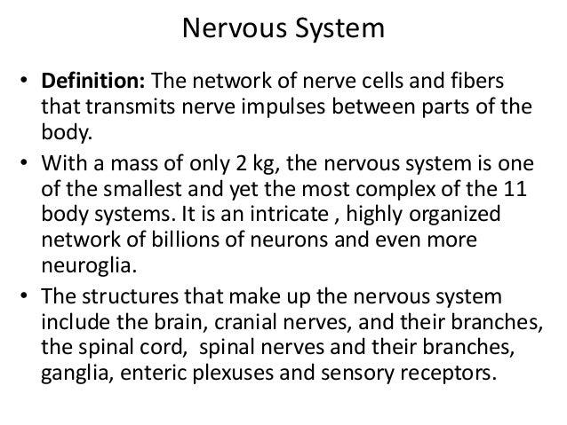 Nervous system unit iii stds