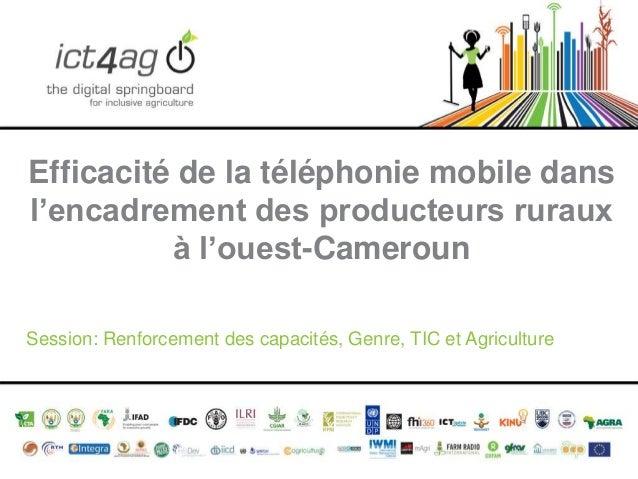 Efficacité de la téléphonie mobile dans l'encadrement des producteurs ruraux à l'ouest-Cameroun Session: Renforcement des ...