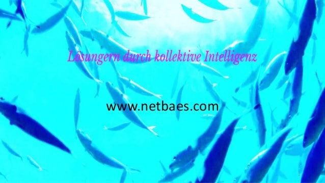 www.netbaes.com 1
