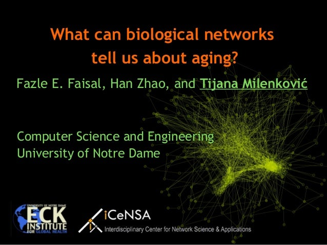Computer Science and Engineering University of Notre Dame What can biological networks tell us about aging? Fazle E. Faisa...