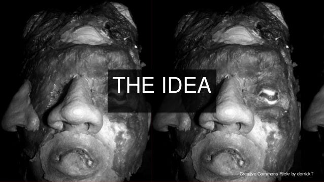 IDEA—       THE IDEA                                                21                  Creative Commons Flickr by derrickT