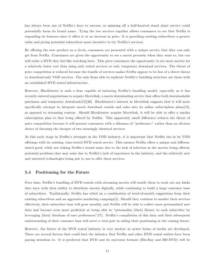 netflix risks essay