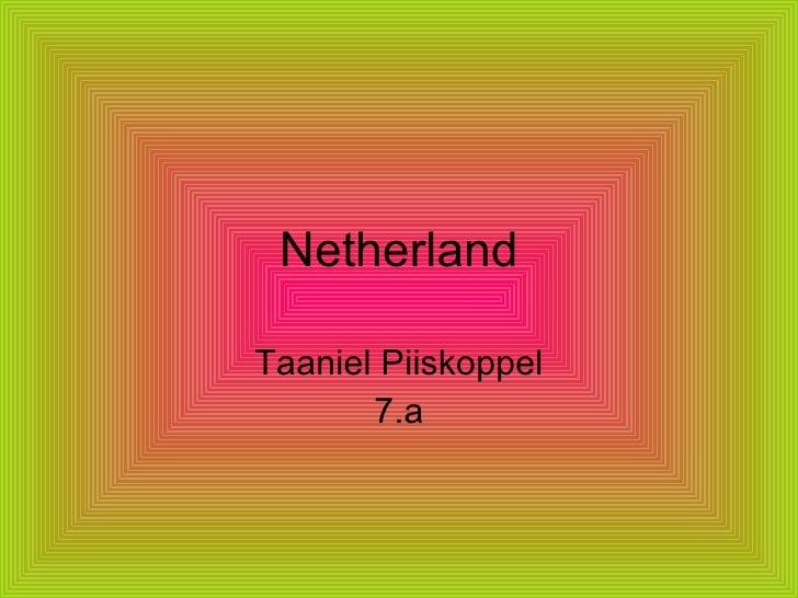 Netherland Taaniel Piiskoppel 7.a