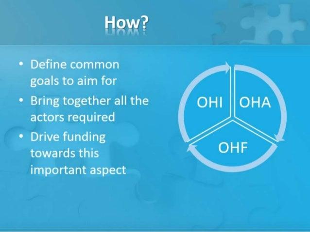 Open Humanitarian Initiative - Presentation to IASC - May 2013