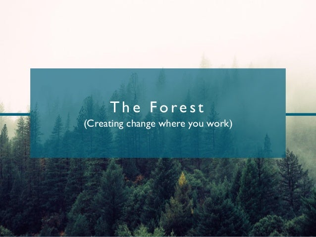 T h e Fo re s t (Creating change where you work)