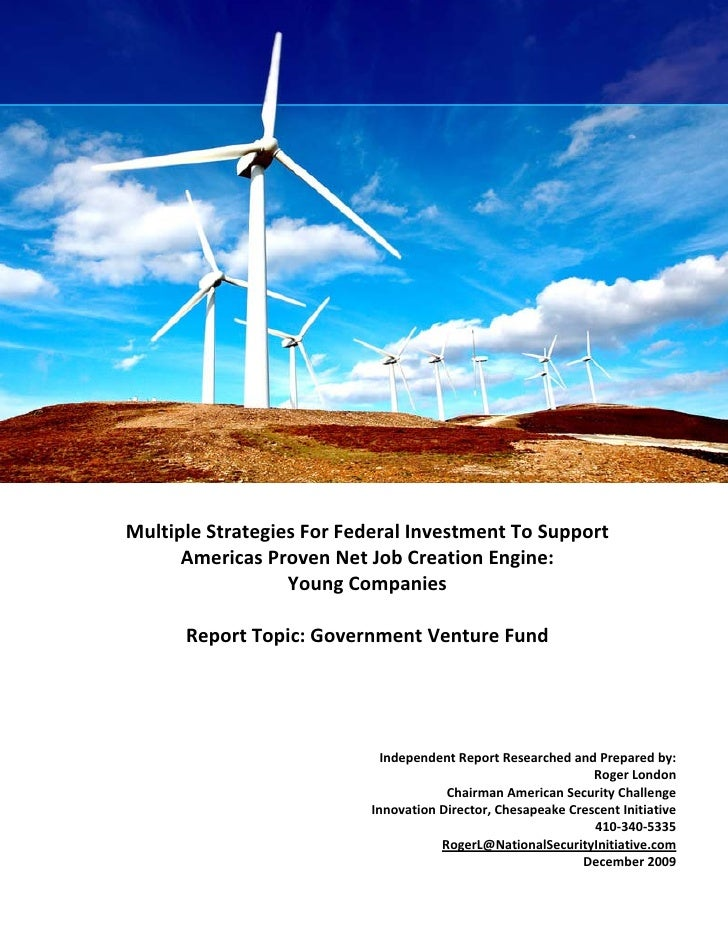 Multiple Strategies for Federal Investment to Support Americas Proven                  Net Job Creations Engine: Young Com...