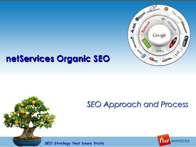 netServices Organic SEO  SEO Approach and Process  SEO Strategy that bears fruits
