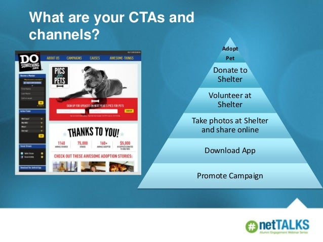 What are your CTAs and channels? Adopt Pet  Donate to Shelter  Volunteer at Shelter Take photos at Shelter and share onlin...