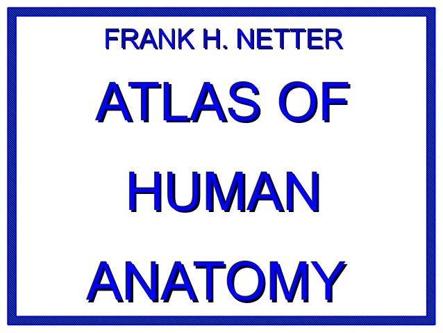 FRANK H. NETTERFRANK H. NETTER ATLAS OFATLAS OF HUMANHUMAN ANATOMYANATOMY