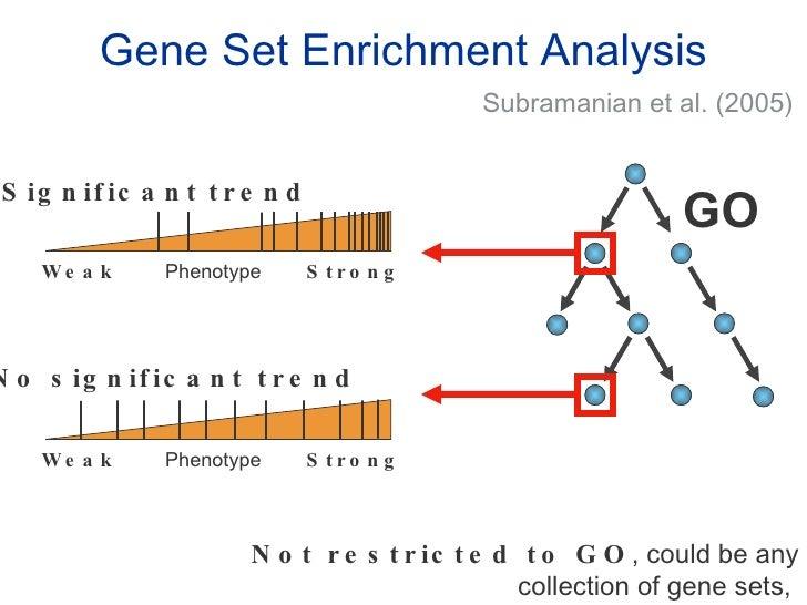 R Gene Ontology Enrichment Analysis Essay - image 5