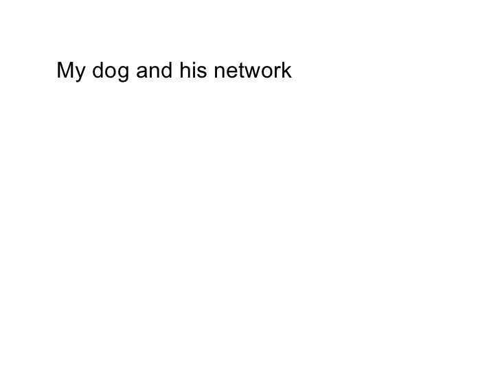 My dog and his network