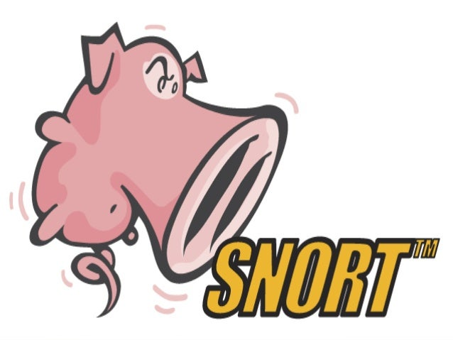 SnortFlow: A OpenFlow-Based Intrusion Prevention System in Cloud Environment