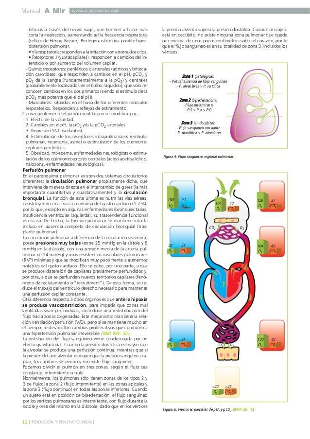 Neumologia amir guia de neumologia