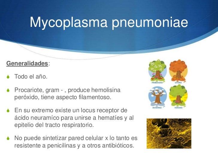 Neumonías atípicas Slide 3