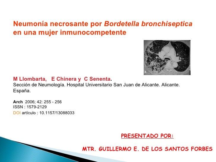 Neumonía necrosante por  Bordetella bronchiseptica  en una mujer inmunocompetente M Llombarta,  E Chinera y C Senenta . ...