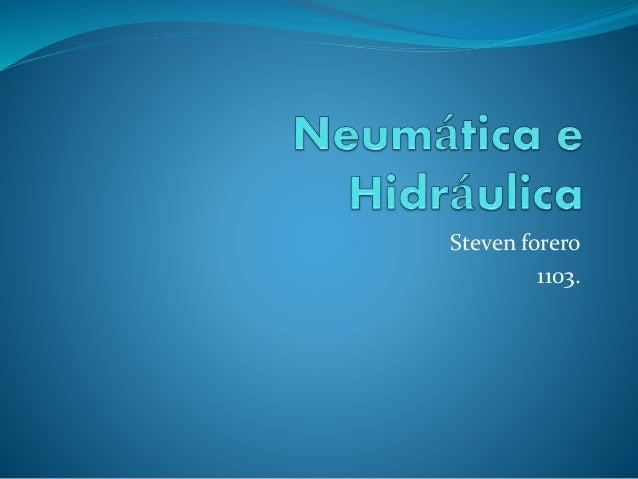 Steven forero 1103.