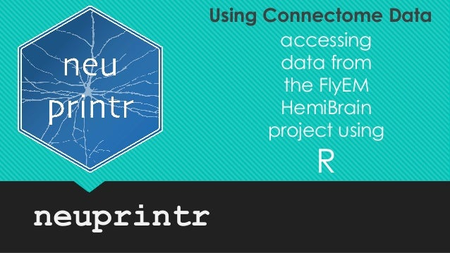 neuprintr accessing data from the FlyEM HemiBrain project using R Using Connectome Data