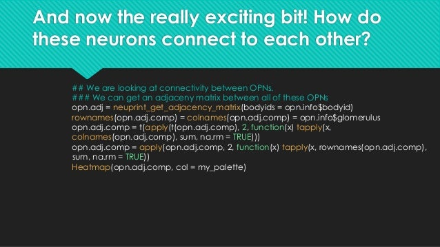 And now the really exciting bit! How do these neurons connect to each other?