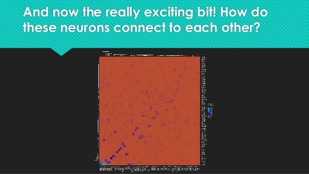 Other ways to look at connectivity ## What about OPN connectivity to neurons not in this set of OPNs? ### First, is there ...