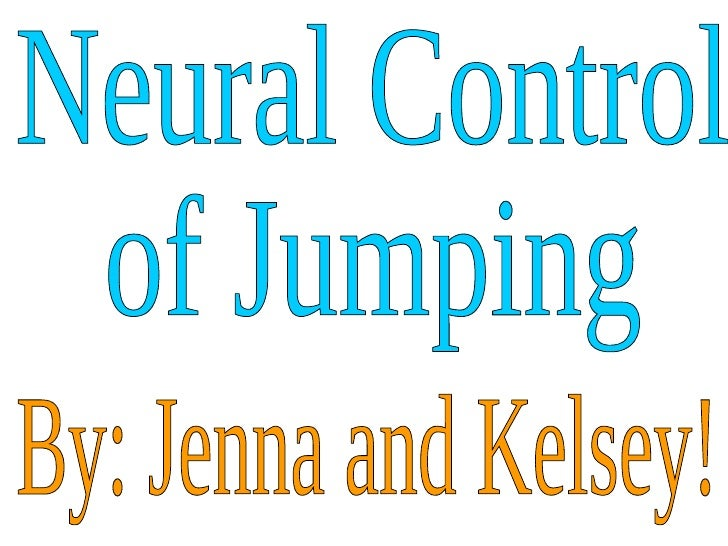 Neural Control  of Jumping By: Jenna and Kelsey!