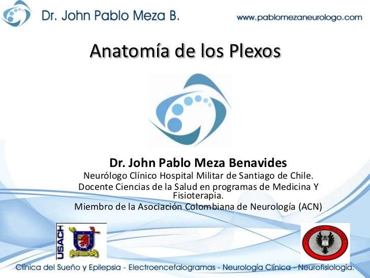 Anatomía de los Plexos<br />Dr. John Pablo Meza Benavides<br />Neurólogo Clínico Hospital Militar de Santiago de Chile.<br...