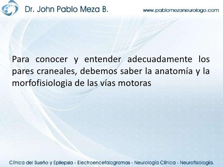 Neuroanatomia   pares craneales Slide 2