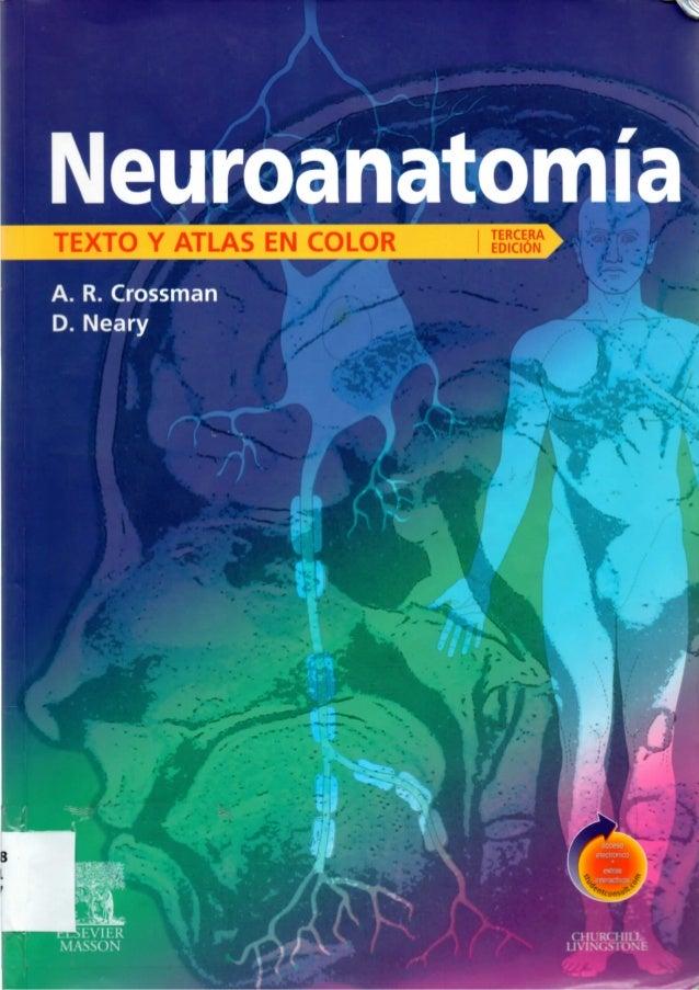Neuroanatomia   texto y atlas crossman