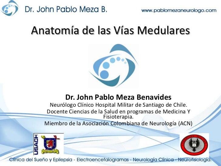 Anatomía de las Vías Medulares<br />Dr. John Pablo Meza Benavides<br />Neurólogo Clínico Hospital Militar de Santiago de C...