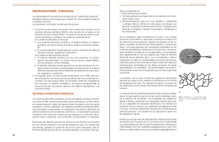 Dr. Edgar Osuna S. - Dr. Alfredo Rubiano C.                                                                               ...