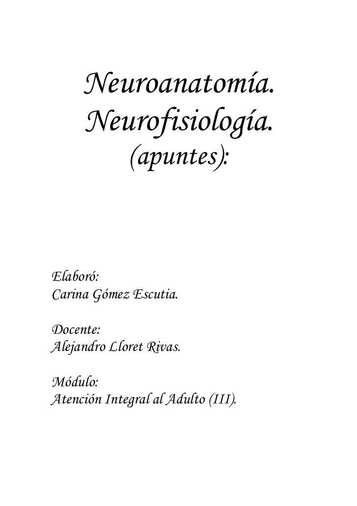 Neuroanatomía.     Neurofisiología.              (apuntes):Elaboró:Carina Gómez Escutia.Docente:Alejandro Lloret Rivas.Mód...