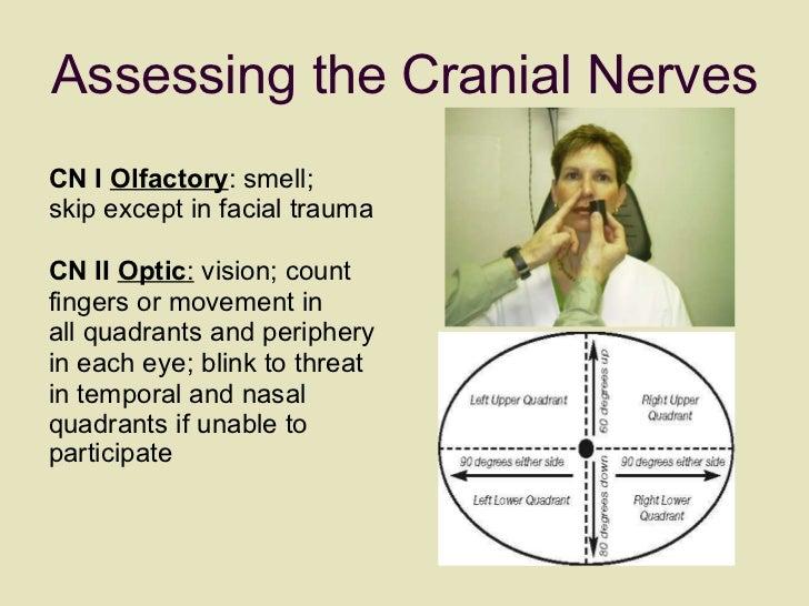 Assessing the Cranial Nerves <ul><li>CN I  Olfactory : smell;  </li></ul><ul><li>skip except in facial trauma </li></ul><u...