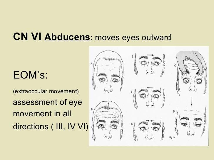 <ul><li>  </li></ul><ul><li>CN VI  Abducens : moves eyes outward   </li></ul><ul><li>  </li></ul><ul><li>EOM's:  </li></ul...