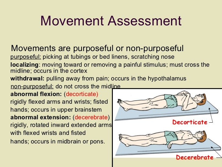 Movement Assessment <ul><li>Movements are purposeful or non-purposeful  purposeful:  picking at tubings or bed linens, scr...