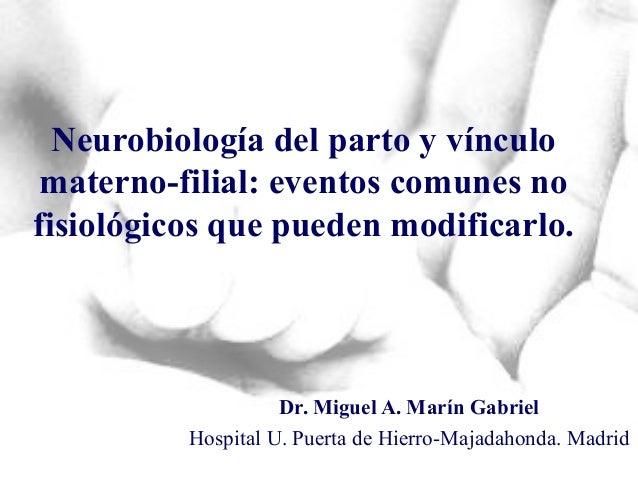 Neurobiología del parto y vínculo materno-filial: eventos comunes no fisiológicos que pueden modificarlo. Dr. Miguel A. Ma...