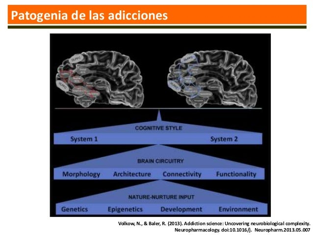 NEUROBIOLOGIA DE LA ADICCION DOWNLOAD