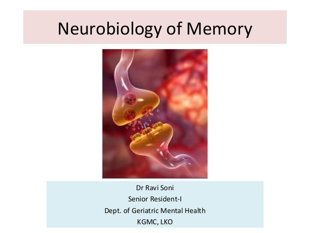 Neurobiology of Memory Dr Ravi Soni Senior Resident-I Dept. of Geriatric Mental Health KGMC, LKO