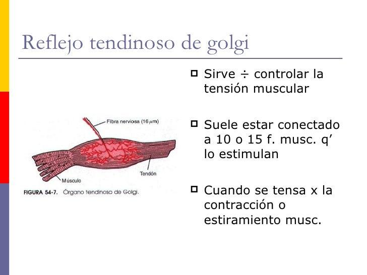 Neurofisiología, cap 54 (Guyton)