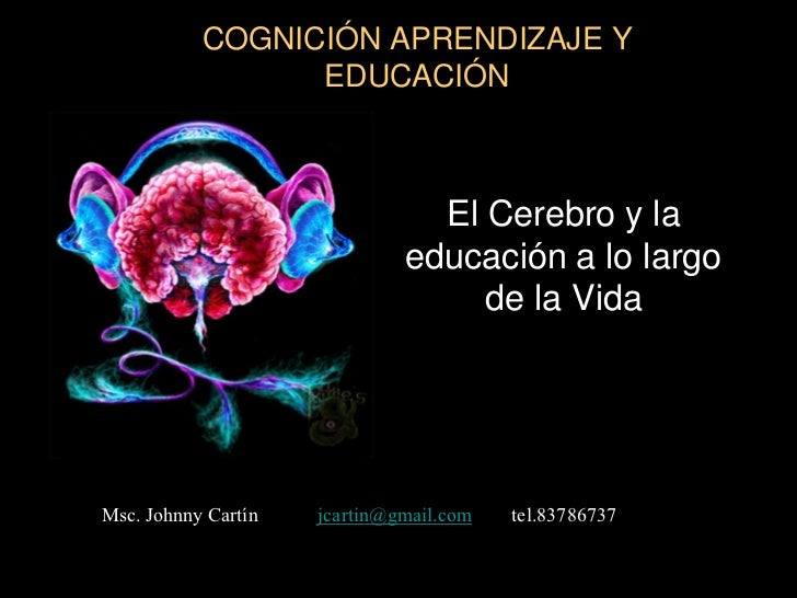 COGNICIÓN APRENDIZAJE Y                 EDUCACIÓN                                El Cerebro y la                          ...
